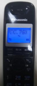 P60105-175215